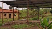 The Barefoot Artist: The Rwanda Healing Project, Gisenyi, Rwanda